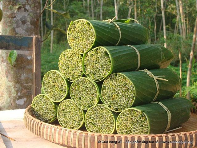 2. Plastik pipet yerine kullanılabilecek birçok alternatif var, mesela buradaki pipetler çimenlerden yapılmış.