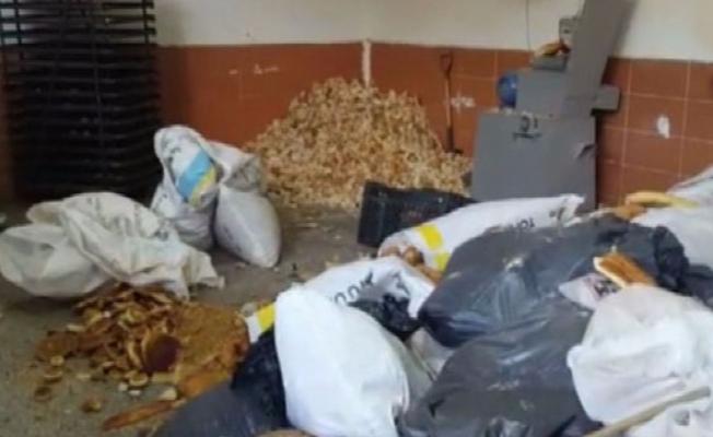 Çöpten topladıkları ekmekleri pasta yapıp sattılar!