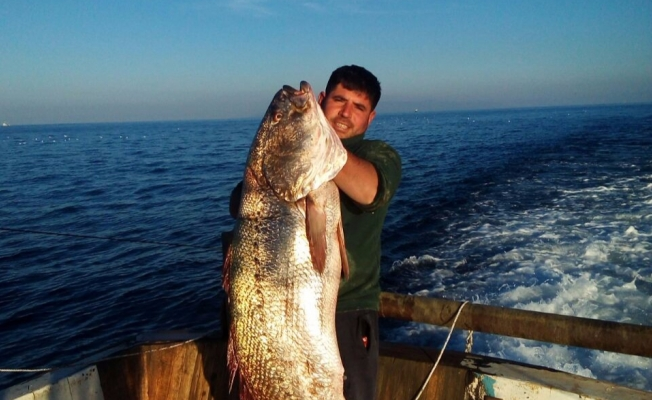 Marmara'da bir ilk! Balıkçılar da şoke oldu!