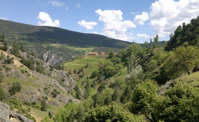 Bursa Gelemiç'te doğa şenliği