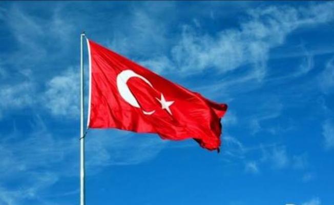 Pentegon'dan Türkiye açıklaması