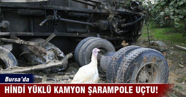 Bursa'da hindi yüklü kamyon şarampole uçtu