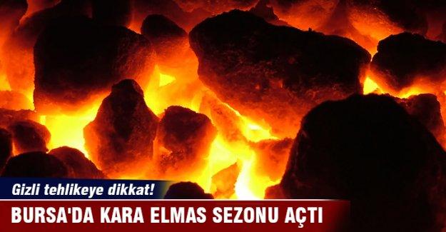 Bursa'da kara elmas sezonu açtı