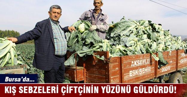 Bursa'da kış sebzeleri çiftçinin yüzünü güldürdü