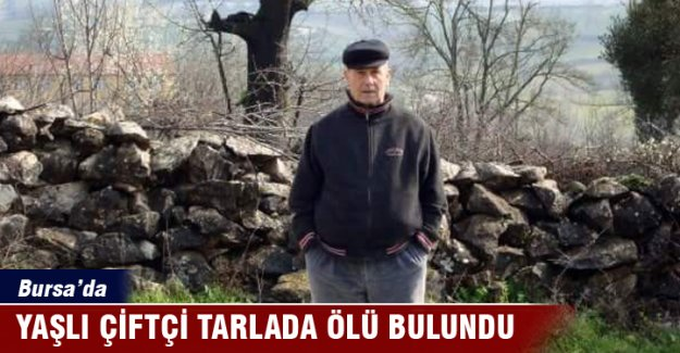 Bursa'da yaşlı çiftçi tarlada ölü bulundu