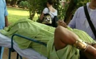 Bülent Ersoy'u Hindistan'da yılan ısırdı!
