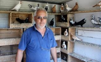 Bursa'da çocukları gibi baktığı kuşlarını çaldılar!