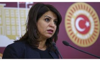 HDP'li vekile 'terör' soruşturması