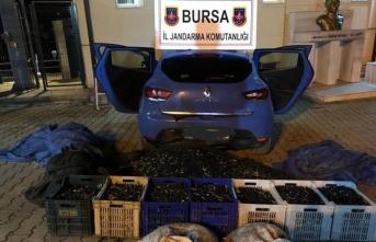 Bursa'da polislerin durdurduğu araçtan bakın ne çıktı?