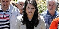 HDP'den hükümete çağrı!