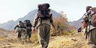 Kadın PKK'lılar 4 kişiyi kaçırdı!