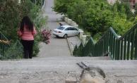 Bursa'da park halindeki otomobil 20 metrelik merdivenlerden uçtu!