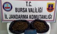 Bursa'da jandarmadan Skunk operasyonu