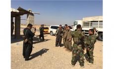 PKK ve Peşmerge kol kola