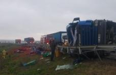 Bursa'da 60 bin liralık salça yola saçıldı