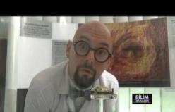 BTM Bilim Bakalım Bölüm 9