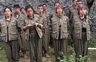 12 üniversite öğrencisi PKK'ya katıldı mı?