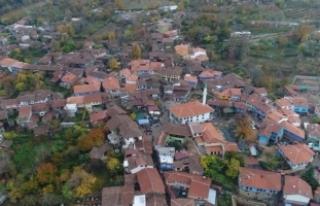 Bursa'nın o köyüne akın ediyorlar! Nüfusunun...