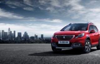 Peugeot Baykar Winter Drive: Peugeot tutkusuyla aşka...