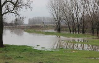 Tunca Nehri'nden 'alarm' durumu