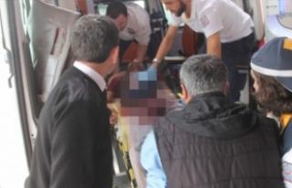 Bursa'da güvercin kavgasında kan döküldü!