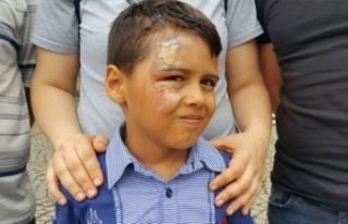 Bursa'da küçük çocuğun hayatını kabusa...