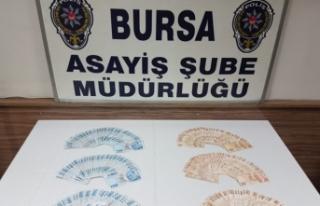 Bursa'da şirketin sorumlusu şikayet etti, büyük...