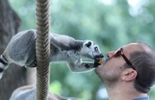 Bursa Hayvanat Bahçesi'nin yeni misafirleri...