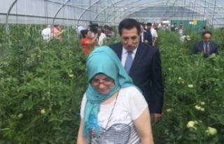 Bursa'da tarımla engelleri aştılar!