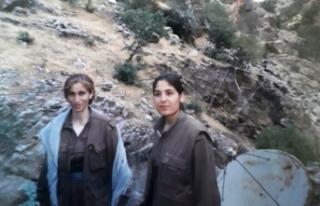 Norveç'te tedavi gören PKK'lı terörist teslim...