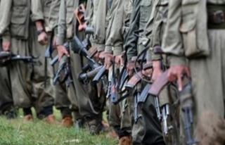 PKK'ya büyük darbe