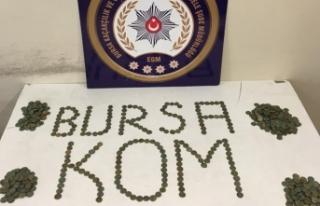 Bursa'da sikke operasyonu