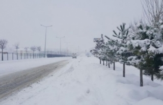 Erzurum'da kar ve tipi uyarısı