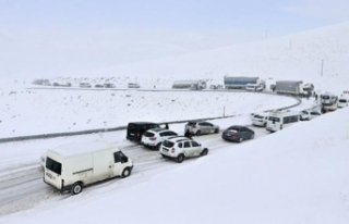 Van'da onlarca araç yolda kaldı