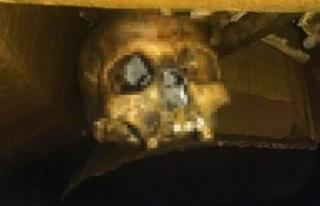 Ev tadilatındaki insan iskeleti kadavra çıktı