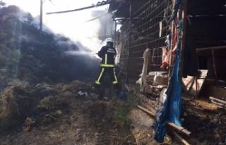 Bursa'da ahırda çıkan yangında 10 ton buğday...