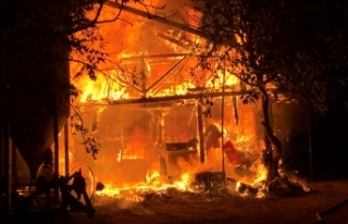 Samanlıkta büyük yangın: 5 Büyükbaş hayvan...
