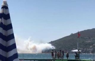 Burgazada'da yangın çıktı