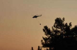 Çanakkale Gelibolu'daki orman yangınına havadan...
