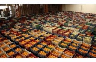 Yaş meyve sebze ve mamulleri ihracatı arttı