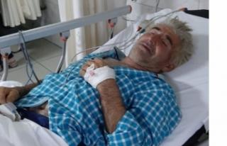Bursa'da kabakları ilaçlarken zehirlendi