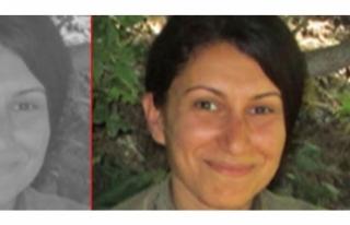 PKK'dan kaçmak için 150 bin lira vermiş!
