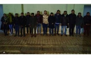 MSB: 3541 Suriyeli yakalandı