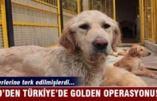 ABD'den Türkiye'de Golden operasyonu!