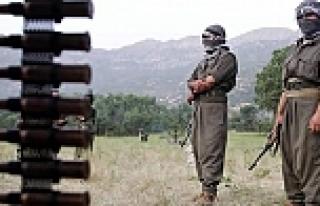 Almanya'dan PKK'ya şok yardım