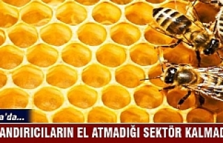 Bursa'da dolandırıcıların el atmadığı...