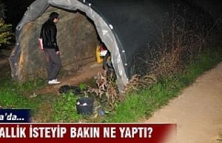 Bursa'da helallik isteyip bakın ne yaptı