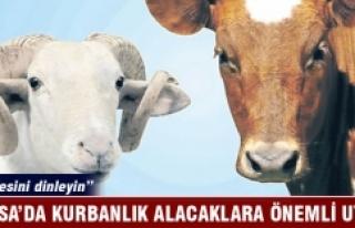 Bursa'dan kurbanlık açıklaması: Nefesini...