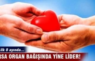 Bursa organ bağışında lider