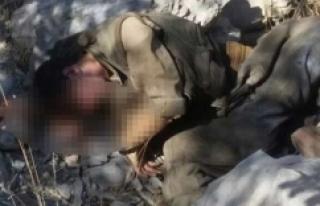 Cudi Dağı'nda 3 terörist öldürüldü